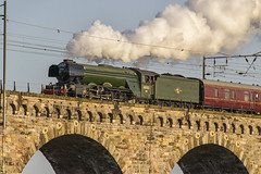 Flying Scotsman Crossing Royal Border Bridge Berwick (Colin Myers Photography) Tags: bridge man colin train photography scotland flying border royal steam locomotive berwick scots steamtrain myers scotsman flyingscotsman steamlocomotive 4472 60103 royalborderbridge royalborderbridgeberwick colinmyersphotography wwwcolinmyerscom flyingscotsmantrain