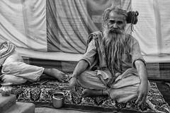 India - Mahya Pradesh - Kumbh Mela 2016 (Vincent Chambon Professionnel) Tags: indore sadhu hijra ujjain kumbhmela indiapeople hidja