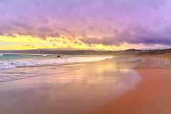 Melbourne Photographer - Beach (DSC_5663) (fatima_suljagic) Tags: beach fineart photographers australia melbourne australianphotographers fineartprints australianbeaches australiannature nikond800 melbournephotography photographermelbourne fatimasuljagicmelbourne
