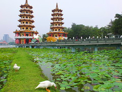 Double Twins (stardex) Tags: lake plant building architecture pagoda duck lotus taiwan twin kaohsiung dragontigerpagoda
