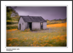 Place in the Country (Chalky666) Tags: painterly spring shed hampshire stable impressionist southdowns multiexposure buttercups selborne