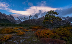 Smokey Peaks ( (Ping...) Tags: autumn patagonia mountain tree fall argentina clouds sunrise landscape golden ngc valley mtfitzroy