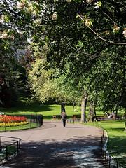 walk in the Park (J.Robinson93) Tags: street camera trees sun colour grass digital landscape four photography scotland town photo edinburgh candid streetphotography olympus panasonic micro 17 capture scots thirds 25mm mkii em10 mirrorless