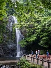 P1020770 (MIKIMONTE) Tags: japan forest waterfall  osaka jap mino cascada