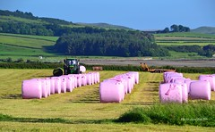 pink marshmallows (Zak355) Tags: scotland farm farming scottish tractors silage johndeere bute rothesay isleofbute ettrickbay pinkwrapping
