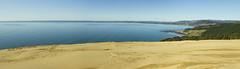 Dune Outlook (Joe Nelley) Tags: newzealand reef tasmansea 90milebeach ahipara canonef24mmf28 absolutelystunningscapes