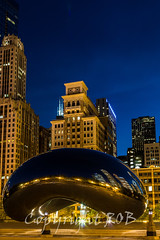 Chicago-2098.jpg (CitizenOfSeoul) Tags: city usa chicago night downtown indiana northamerica cloudgate