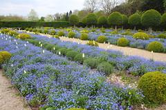 IMG_4434 (Irina Souiki) Tags: parcdesceaux france paris sceaux flowers nature parc park
