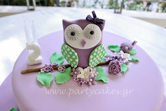 Owl cake to match the invitation the customer showed me. Matching cake pops and macaron. (Party Cakes By Samantha) Tags: birthday flowers green bird birds cake pretty branch purple lace girly 2nd lilac bow owl mauve lime pops birdies birdy macaron