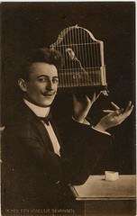 pc vogelkooi b  pm 1910