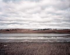 salt lake: early morning (thoughtfactory) Tags: am saltlake tasmania tunbridge phototrip midlands waitingforthesun nosun 5x4 gitzotripod linhoftechnikaiv macpro kodakektar100 schneidersuperangulon90mmf8 epsonv700scan garysauerthompson prolabprocessed lightroom36