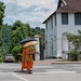 Monk at Luang Prabang
