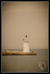 lighthouse | Novigrad - Croatia (Cristian Sabau) Tags: county old travel light sea sky lighthouse white water clouds point photography photo nikon flickr mediterranean day guidance horizon croatia style shore orientation novigrad navigate istra mideterranean d5100