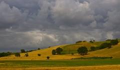 circe (montep) Tags: verde raw tramonto nuvole giallo cielo marche paesaggio collina casolare sera macerata luglio campi quercia svittore