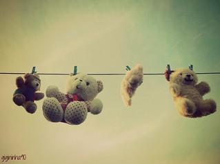Mais uma da série Minha mãe lavou meus ursos!