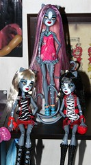 Werecat Triplets (tertlecrazy55) Tags: pink monster high twins purple triplets custom reroot werecat