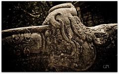"""කොරවක් ගල....  Korawak Gala (Balustrades) (Upul R) Tags: animal stone dragon imaginary korawakgala gala"""" """"korawak """"makara"""