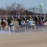 151 - race 9 - Around the Turn thumbnail