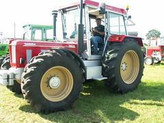 PICT8076 (fuchs377) Tags: tractor germany deutschland europa europe traktor bulldog ostfriesland oldtimer allemagne duitsland trecker schlepper niedersachsen schlter oldtimertreffen neuschoo treckertreffen