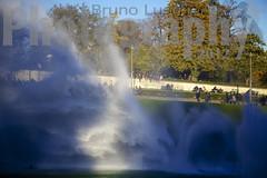 Dhambulations au Trocadro ( Phi Bokeh  dood) Tags: paris photographe parisienne baladeparisienne photogaleriebruno brunoluscher luscherbrunoluscherphi