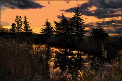 When the night come. (gos1959) Tags: lake clouds reflex pond fake jammerbugt gynther mygearandme mygearandmepremium mygearandmebronze biersted