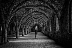The hunger of those early years will never return (martinfowlie) Tags: windows light blackandwhite shadows monastery vault cloister crypt loner blocparty ionsquare lmort