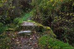 El pequeo puente de piedra (SantiMB.Photos) Tags: bridge espaa way puente camino path otoo esp sendero navarra baztn 2ig 2tumblr olazur 2blogger vacaciones2015