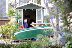 Who is that in the summer house? (Benn Gunn Baker) Tags: summer house canon garden bristol for toddler baker mask shed v anonymous benn gunn vendetta bethan atia 550d t2i