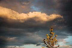dramatic sky (crybaby75) Tags: sky cloud clouds canon spring hungary cloudy budapest may 1785 felh tavasz 2016 felhk mjus efs1785isusm efs1785 felhs 1000d canoneos1000d