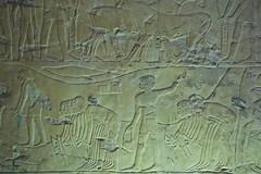 Egitto, Luxor le tombe dei nobili 139 (fabrizio.vanzini) Tags: luxor egitto 2015 letombedeinobili