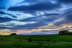 Sunset on the field (vamp8888) Tags: trees sunset summer sun sunlight flower grass clouds canon fence wind fields 6d strongwinds canon6d