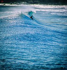 Surf frees the waves of life. (miguel.santos.1029) Tags: sea praia beach freedom mar surf waves surfer surfing ondas azores surfphotography surflife instasurf instasurfing photoaoacaso praticarsurf surphotos