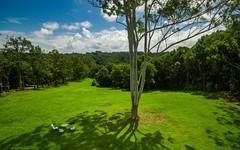575 Binna Burra Road, Binna Burra NSW