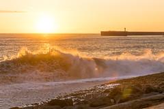 DSC_0206 (sergeysemendyaev) Tags: sunset sea storm beach spring warm waves russia dusk adler atthebeach seashore blacksea seacoast bigwaves sochi  2016                 duringf1 1 duringformulaone