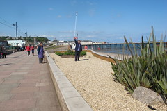 IMG_1938site2 (janohighway) Tags: summer sculpture art design seaside community selection environment choice recycling collective debate teignmouth outdoorart ecoart sculpturetrail devonuk womenartists trail2016