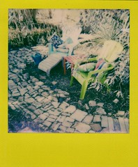 yard scene + color frame instant film (EllenJo) Tags: arizona home yard polaroid polaroid600 2016 may23 instantfilm polaroidjobpro ellenjo colorframe ellenjoroberts impossibleproject theimpossibleproject may2016