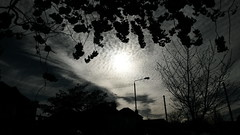 Blinding oculus (ivaylohristev) Tags: light sky blackandwhite sun sunlight sunshine skyline clouds contrast dark skyscape grey glare samsung explore cloudscape greysky  skyporn vsco vscocam vscogrid vscogood