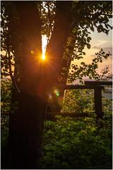 Sunset .. (:: Blende 22 ::) Tags: trees sunset sun clouds germany landscape deutschland evening thringen sonnenuntergang cloudy wolken thuringia german landschaft sonnenstrahlen eic uder abends landkreis bewlkt eichsfeld heilbadheiligenstadt canoneos5dmarkii ef2470f28liiusm maienwand