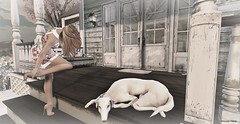 Home (aloyssia.hema) Tags: secondlife virtual maitreya mesh meshbody body beautifull