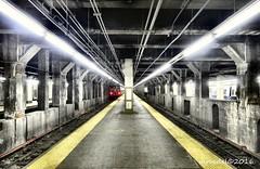 GCT platform (MROEDEL) Tags: roedel madridminer train nyc newyorkcity gct grandcentralterminal station tracks underground steel concrete dark noflash perspective vanishingpoint