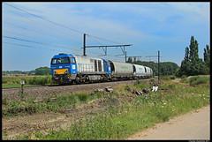 Europorte 1756, Ekeren, 12-07-2011 (Sander Zwoferink) Tags: belgi 1756 ekeren graantrein europorte 12072011 europorte1756