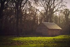 My little corner of the world (Pat Kelleher) Tags: ireland fuji cork fujifilm xt1 patkelleherphotography fujixt1
