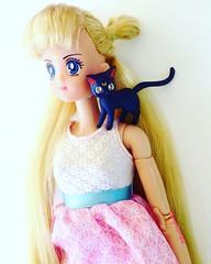 Happy birthday (TheGreatSpid) Tags: moon doll dolls princess serenity sailor sailormoon irwin usagi