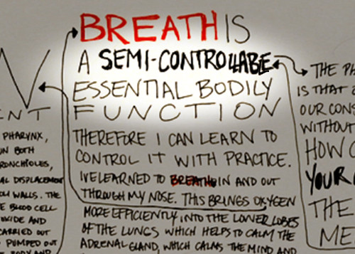 Trangression Through Your Breath, by Michelle Graves (Photo Credit: Michelle Graves)
