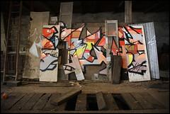 Swiz (SKE) Tags: street urban terrain streetart paris art colors wall fleurs painting lost graffiti paint artist couleurs tag letters style spot spray peinture painter graff mur bombing abandonned lettres graffeur banlieue photographe abandonn graphotism vierge soke lieu friche batment
