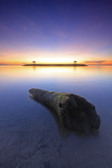Lonely Lonely Log (Pandu Adnyana (thanks for 100K views)) Tags: bali beach sunrise indonesia log coconut wave bale breaker pantai sanur karang