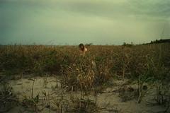 Seclusion (Izzy Guttuso) Tags: ocean blue sea seascape beach girl grass vintage coast sand alone florida rustic grain land tropical coastline grasses noise barren tropics eastcoast seclusion