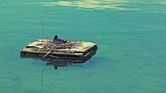 Floating Home (RECord!) Tags: reflection water canon landscape wooden rocks flickr floating waterbird retro shore hd crate relaxed 169 shimmer lakegeneva rhone lacleman hautesavoie rhonealpes yvoire canonef70200mmf28l stickhouse 550d alples