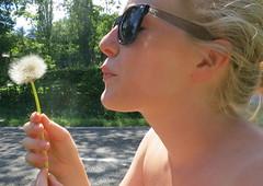 Dandelion! (LieLieLuv) Tags: blow dandelion wishing