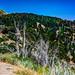 San Bernadino from above HDR 2